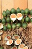Betel palm Stock Image