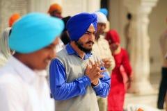 Betender Sikh in Amritsar Stockbilder