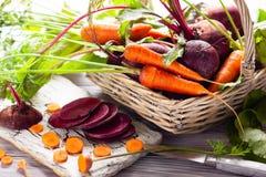 Beterrabas e cenoura orgânicas frescas Fotografia de Stock Royalty Free