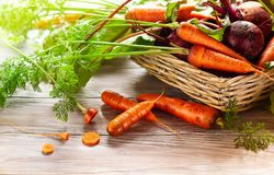 Beterrabas e cenoura orgânicas frescas Fotografia de Stock