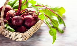 Beterrabas orgânicas frescas Imagens de Stock