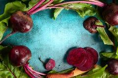 Beterrabas orgânicas frescas Foto de Stock Royalty Free