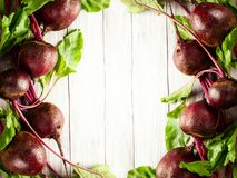Beterrabas orgânicas frescas Fotos de Stock