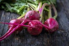 Beterrabas vermelhas diminutas orgânicas cruas da listra dos doces Fotos de Stock Royalty Free