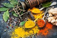 Betesmark för fjärd för asiatisk för tabellbakgrund för kryddor mörk gurkmeja för curry ljust rödbrun Arkivbilder