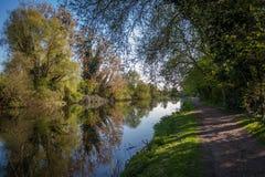 Betesmarkflod nära London Fotografering för Bildbyråer