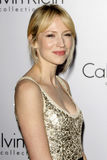 Beth Riesgraf Royalty Free Stock Images