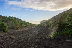 Bethells beach. Near to Auckland city, at west coast, also estuary of the Waitekere river Royalty Free Stock Image
