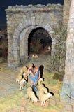 Betlemme, il pastore con le pecore Fotografia Stock Libera da Diritti