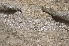 beton obraz royalty free