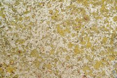 Beton met mos wordt behandeld dat stock fotografie