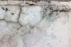 Beton texture Stock Photos