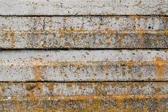 Betongplattor med gul mossa abstrakt bakgrund Fotografering för Bildbyråer