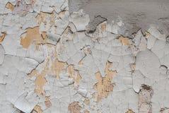 Betongväggen med gammal murbruk gå i flisor, vit bakgrund, textur Royaltyfri Bild