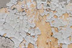 Betongväggen med gammal murbruk gå i flisor, vit bakgrund, textur Royaltyfri Foto