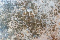 Betongväggtextur Arkivbilder