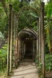 Betonkonstruktion bei Edward James arbeitet in Xilitla Mexiko im Garten lizenzfreie stockfotos