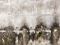Betonmauer mit Form Lizenzfreies Stockfoto