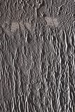 Betonmauer teilweise gemalt im Grau mit einer Farbenrolle Malen Sie Beschaffenheit im Seitensonnenlicht lizenzfreies stockbild