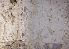Betonmauerbeschaffenheit mit Farbenschale Stockfotos
