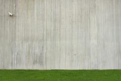 Betonmauerhintergrund mit grünem Gras stockfoto