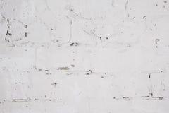 Betonowa ściana z wybielanie warstwą Obraz Stock