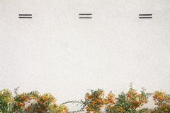 Betonowa biel ściana zdjęcia stock