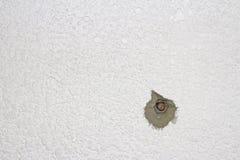 Betonowa ściana z dziurami i ryglem Obraz Royalty Free