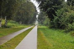 Betonowa droga przechodzi przez zielonych poly zdjęcia royalty free