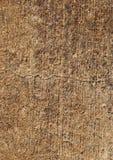 Betonowa grungy tekstura Fotografia Stock