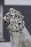 Betonowa lwa ogrodzenia głowa Zdjęcia Royalty Free