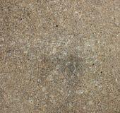 betonowa podłogowa tekstura obrazy royalty free