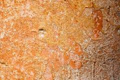 Betonowa powierzchnia z resztkami pomarańczowa farba i wybielanie Obraz Stock