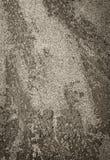 betonowa tekstura Zdjęcia Stock