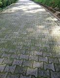 Betonowego bloku footpath w parku zdjęcie royalty free