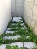 Betonowi schodki rocznika budynek obraz stock