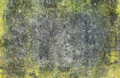 betonowy grunge pleśniejąca ściana Obrazy Royalty Free