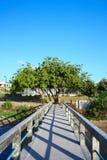 Betonowy jetty z target46_1_ nad morzem Fotografia Stock