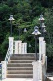 Betonowy most dżungla Zdjęcia Stock