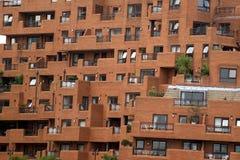betonowy nieruchomości joungle real Zdjęcie Royalty Free
