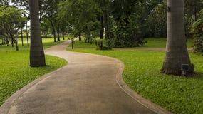 Betonowy spaceru sposób w parku Fotografia Stock