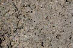 betonowy stary Zdjęcie Stock