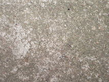 betonu TARGET346_1_ ślad Zdjęcie Stock