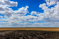 Betpakdala干草原南哈萨克斯坦 免版税图库摄影