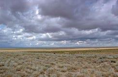 Betpakdala steppe southern kazakhstan Royalty Free Stock Photo