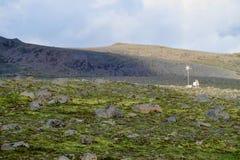 Beträchtlicher flacher Bereich mit grünem Moos und Kies Lizenzfreie Stockfotos