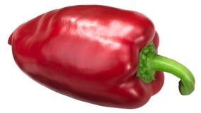 Beträffande spansk peppar Grueso de Plaza Arkivbilder