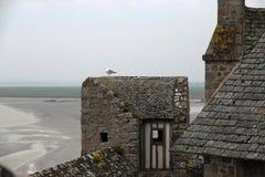 Betrügen Sie auf mittelalterlicher Wand bei Mont Saint Michel in Frankreich lizenzfreie stockfotos