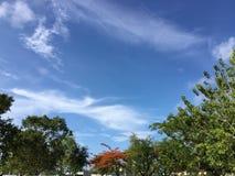 Betrachten des Himmels lizenzfreies stockbild