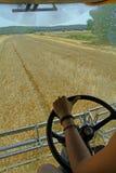 Betrachten des Weizenfeldes vom Innenraum der Erntemaschine Stockfotos